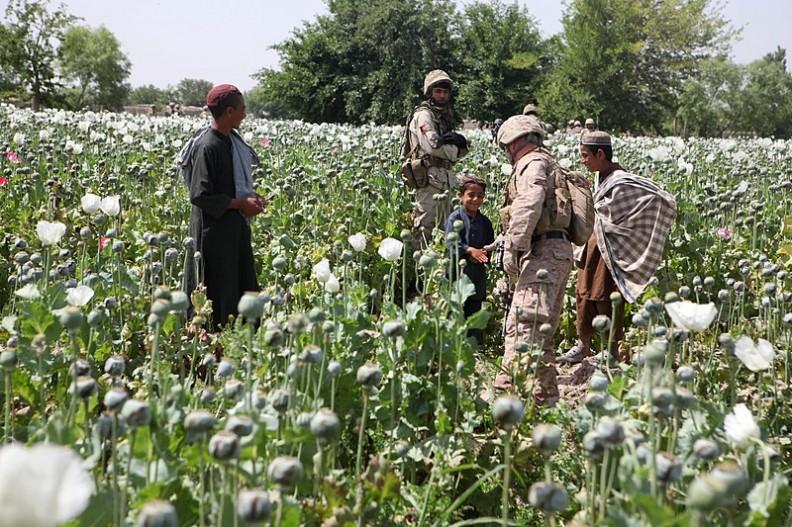 Powszechnie spotykanym na Bliskim Wschodzie narkotykiem jest opium.   Fot.:ISAF Headquarters Public Affairs Office/110429-M-PE262-014/Wikimedia Commons