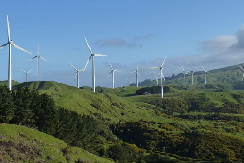 Krajobraz Nowej Zelandii w wielu miejscach wzbogacony jest prądotwórczymi wiatrami.  Fot.:Michal Klajban/4.0 International/Wikimedia Commons