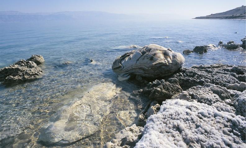 Brzeg Morza Martwego. Zprawej strony widoczne osady soli.