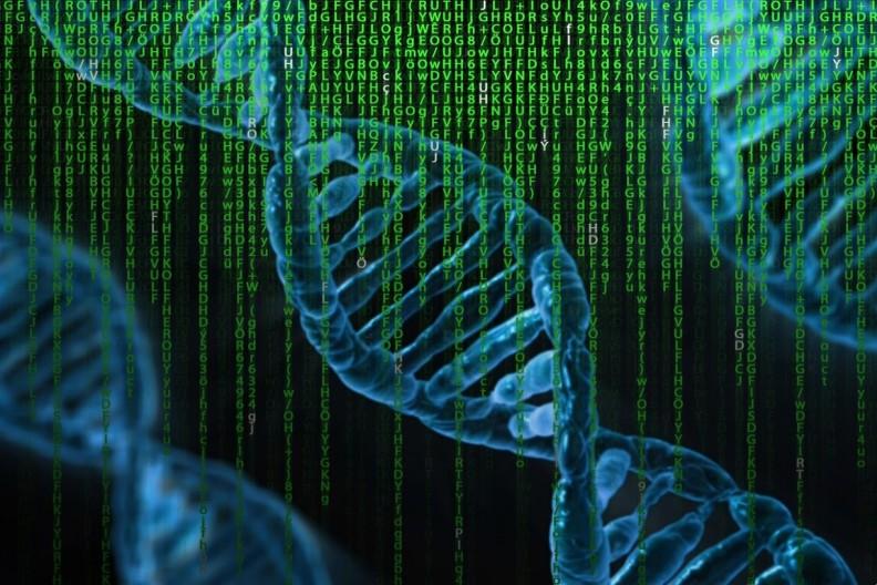 Interpol od 2004 roku korzysta z cyfrowych baz ludzkiego DNA. fot. Pixabay