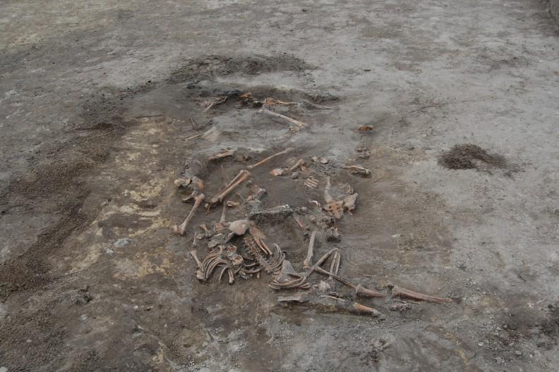 Masowa mogiła ofiar UPA odkryta w Woli Ostrowieckiej. fot. autorstwa Leon Popek - Prywatna kolekcja, CC BY-SA 3.0, https://commons.wikimedia.org/w/index.php?curid=16630974